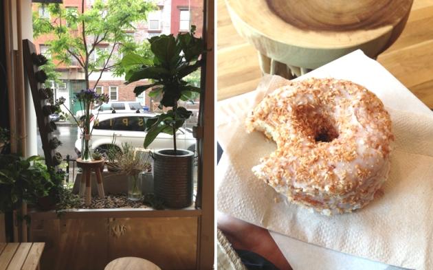 SPINA_doughnut
